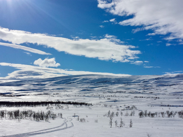 tundra-view-in-the-north-of-norway-in-winter-7M2MF79